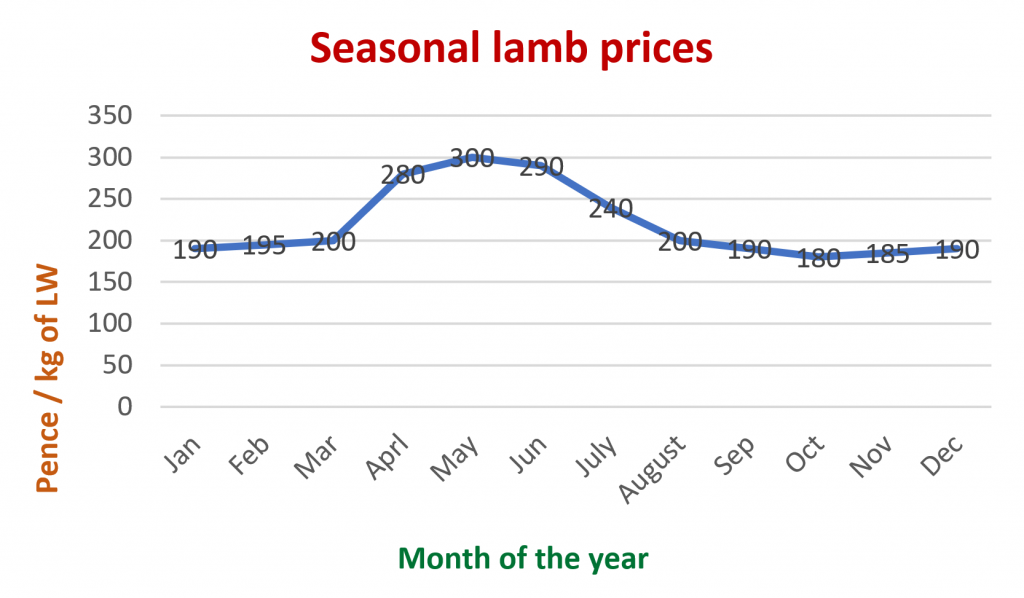 Seasonal Lamb Prices