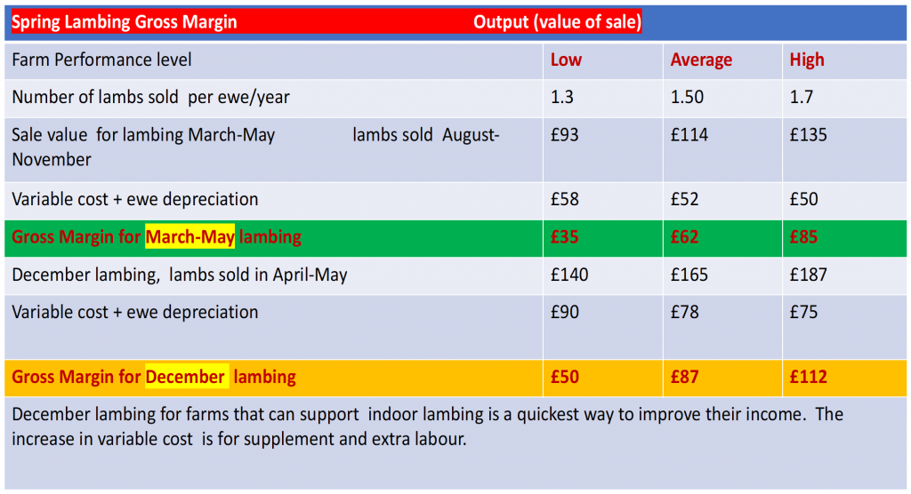 Spring Lambing Gross Margin