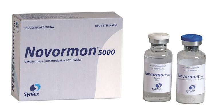 Novormon